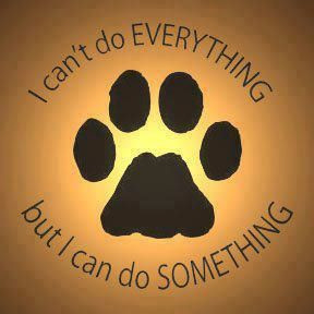 Animal Rescue, Gift, Dogs, Quotes, Shelters, Volunteers, Pets, Make A ...