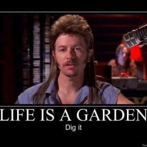 Joe Dirt....Too Funny