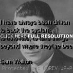 ... sam walton, quotes, sayings, teamwork, business, quote sam walton