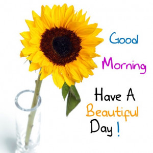 ... morning have a nice day Good Morning: Good Morning… Have a great day
