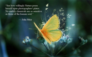 Uplifting thoughts from the great naturalists to deepen your ...