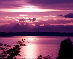 Love Quote: purple sunset at the sea or by a lake.