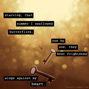 quotations image quotes bokeh circles butterflies wings typography ...