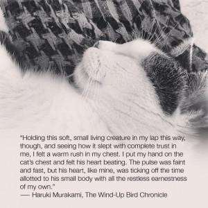 ... Living Creature In My Lap This Way… - Haruki Murakami ~ Cat Quotes