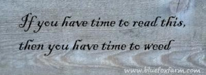 Maybe it should say if I have time to post this, I have time to weed ...