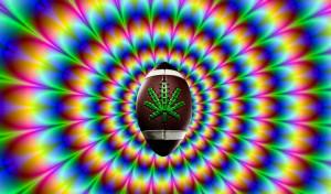 Super-bowl-2014-is-stoner-bowl-stoner-bowl-marijuana-states-1124x660 ...
