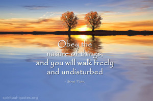 Spiritual quote by Seng T'san