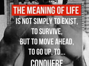Arnold Schwarzenegger quotes   The Meaning of Life