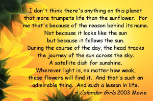 Quotes About Sunflowers