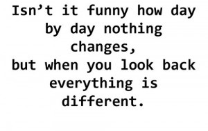 Funny How Quickly Things Change Quotes