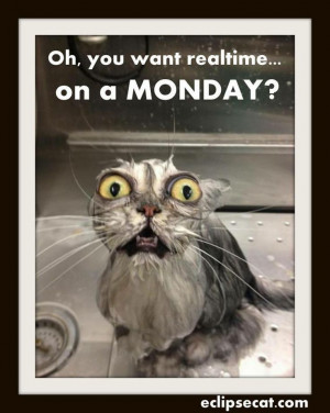 Realtime on a Monday? Court Reporter Humor.