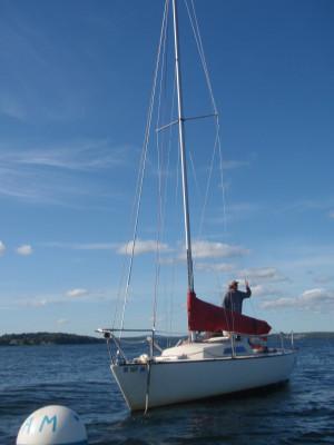 Racing Sailboat Penopscot Bay