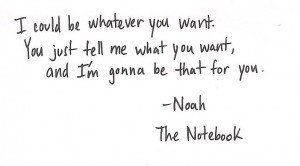 the notebook quotes noah the notebook quotes noah