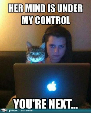 Cat+mind+control+funny+people+animals+pics.jpg#funny%20cats%20who ...