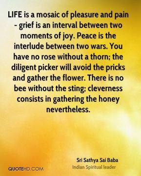Sai Baba Quotes Hurt. QuotesGram