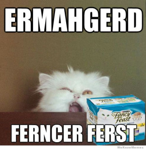 The ermahgerd meme has spread to the animals here are the 10 funniest ...
