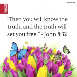 ... Verses 12, Bible Quotes, Jesus, Butterflies Bible, Bible Verses, John