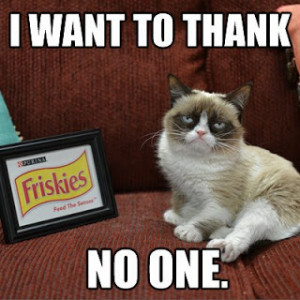 Grumpy Cat don't want to thank any one