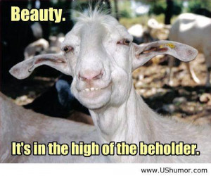 -sayings-and-quotes-humor-funny-pictures-funny-jokes-funny-animals ...
