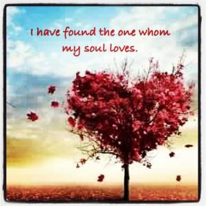 soul mate :)