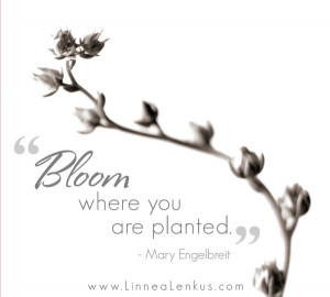 Bloom Inspirational Quote by Mary Engelbreit