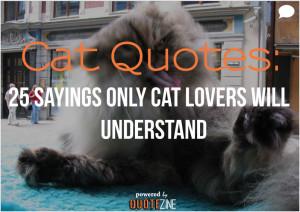 cat-quotes.jpg