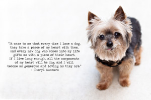 rest in peace, bonnie