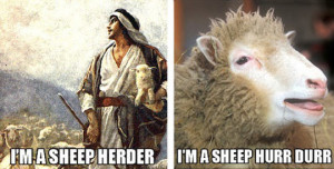 The sheep herder…
