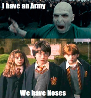 funny-pics-harry-potter-vs-voldemort