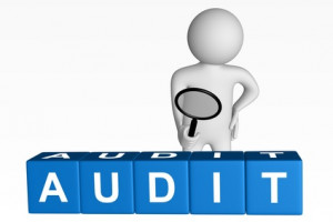 Telecom Auditing and Telecom Audits