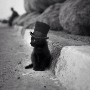black kitty with top hat... :) How could anyone think that black cats ...