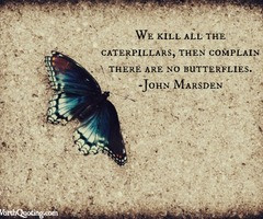 Tagged with caterpillar quotes