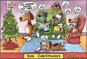 ... .gotsmile.net/images/2011/05/02/funny-dog-christmas_130434703642.jpg