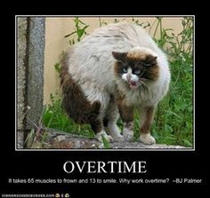 OVERTIME It takes 65 muscles to frown and 13 to smile. Why work ...