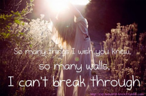 Love Quote : So many things that I wish you knew.