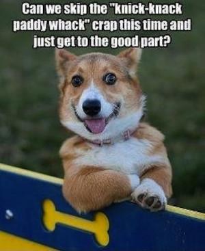 funny dog joke LOL Funny Joke Pic!