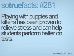 ... to relieve stress and can help students perform better on tests