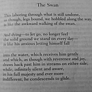 ... , Halen Double, Double Kicks, Poem, Rainer Maria Rilke, Poets Poets