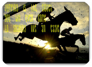 Horse Jumping Quotes And Sayings http://www.freewebs.com/breyer106 ...