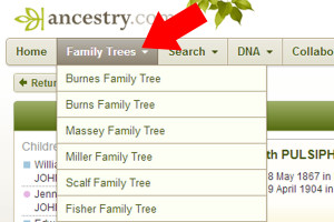 Step 3: Click on the family tree you want to export: