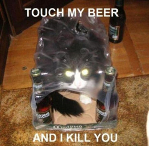 By Admin on October 26, 2012 Funny Animal Pictures