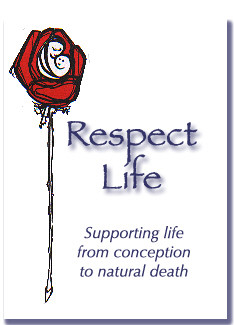 principle six star cutlery respect violence life program was respected