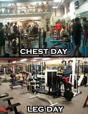 funny-pics-chest-day-vs-leg-day-at-the-gym