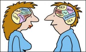 Cartoon: Male and female brains (medium) by Ellis Nadler tagged brain ...