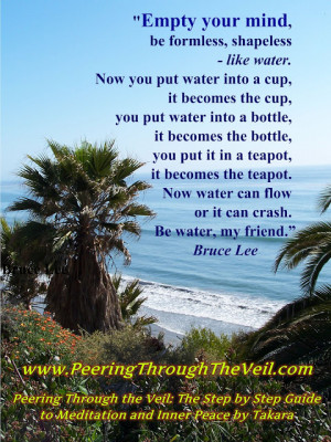 Meditation Quote Bruce Lee