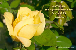 In all things, the supreme excellence is simplicity.