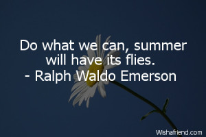 summer-Do what we can, summer will have its flies.