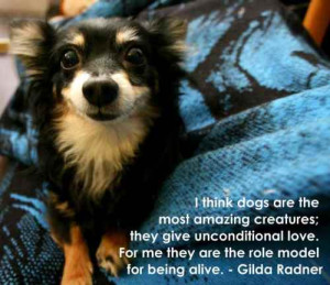 Dog Quote Images