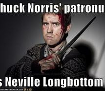 chuck-norris-harry-potter-neville-longbottom-text-331724.jpg