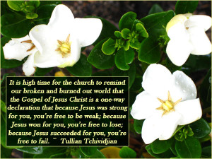 gardenias - Tullian Tchividjian Quote
